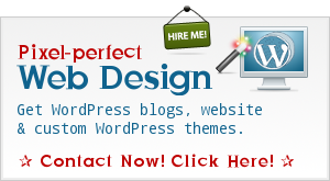 WordPress Theme Customization & SEO Consultancy