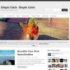 Simple Catch WordPress Theme