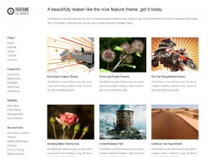 feature-wp-theme