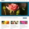 Gabix WordPress theme