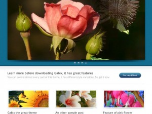 Gabix WordPress theme