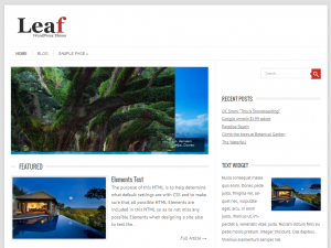 Leaf WordPress Theme - Magazine WordPress theme