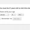 WordPress Age Verify